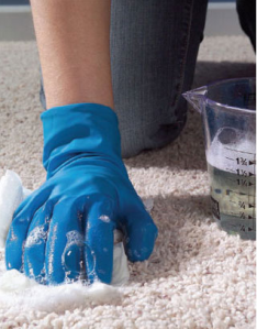 Carpet Maintenance, Carpet Care, Keeping Carpets Clean is Easy
