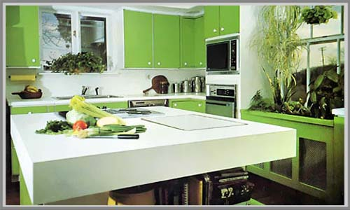 Tropical Kitchen Design